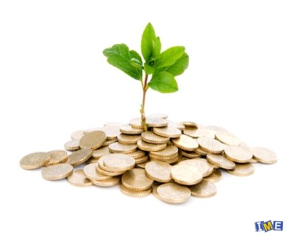 money-tree-raising-business-finance.jpg