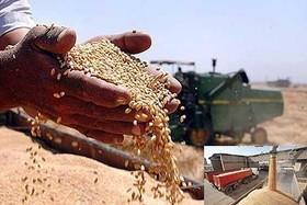 پایان دردسرهای دولت در خرید تضمینی محصولات کشاورزی