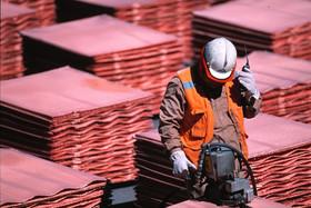 بررسی علل رشد  بهای فلز سرخ