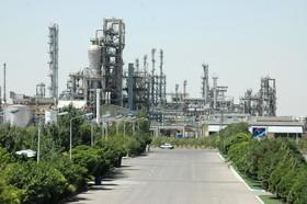 نگاهی به معاملات پلی پروپیلن های نساجی و شیمیایی