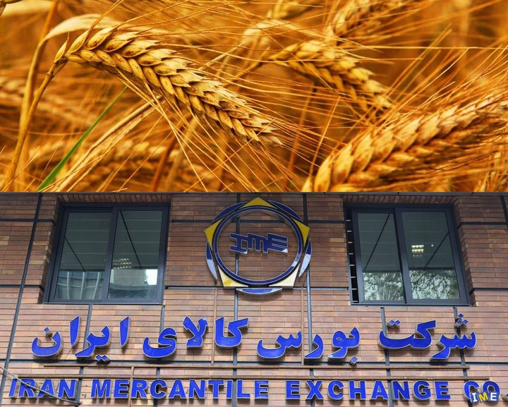 تاکید دولت و مجلس بر عرضه کالاهای اساسی از جمله گندم در بورس کالا