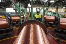 افول قیمت فلز سرخ برای سومین هفته متوالی