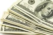 دلار در اوج ماند