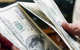دلار بانکی نزولی شد/ افزایش یورو و پوند