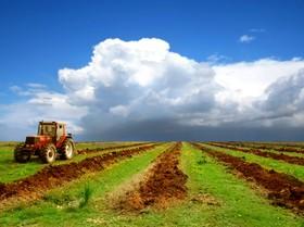 صادرات محصولات کشاورزی رکورد زد