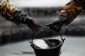 نفت کاهشی شد