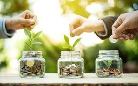 مزایای سرمایهگذاری در اوراق گواهی سپرده سکه طلا