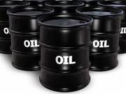 عربستان از برنامه کاهش نیممیلیون بشکه ای نفت خام خبر داد