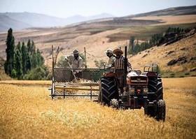 نرخگذاری پاشنه آشیل بخش کشاورزی