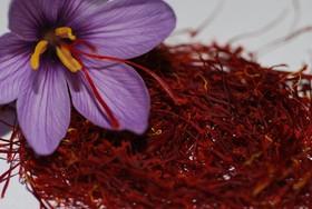 عرضه زعفران در بورس کالاراهگشای توسعه بازارهای صادراتی