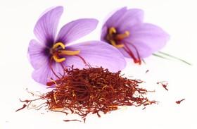 رشد ۲۶ درصدی صادرات زعفران در سال ۹۷