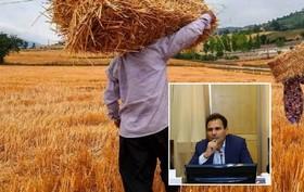 نقش بورس کالا در توسعه بخش کشاورزی/از اجرای طرح قیمت تضمینی تا نظام انبارداری