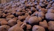 کاهش محسوس قیمت سنگ آهن