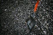فراز و نشیب هایی از جنس زغال