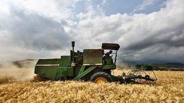 سهم روسیه از بازار جهانی گندم ۴ برابر شد