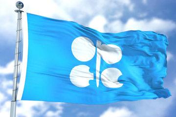 کاهش تولید اوپک مانع کاهش قیمت نفت میشود