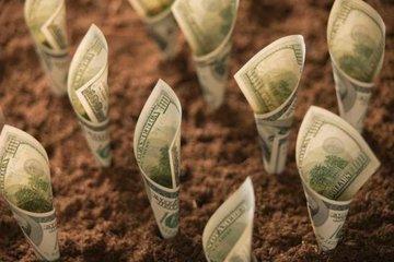 صادرات محصولات کشاورزی روسیه تا ۲۰۲۴ دو برابر میشود