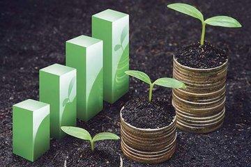 رونق بی سروصدای بازار کشاورزی دنیا