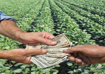 تسهیل کارکرد بخش کشاورزی، مزیت پنجم قراردادهای آتی
