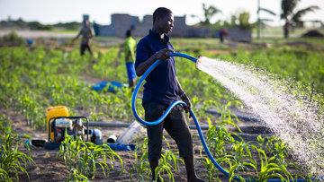 سویا، کشاورزان غنایی را به بورس کالا برد