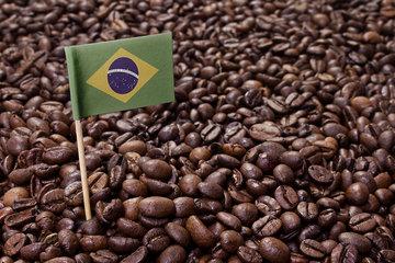 جذابیت قراردادهای آتی قهوه برزیلی برای سرمایه گذاری