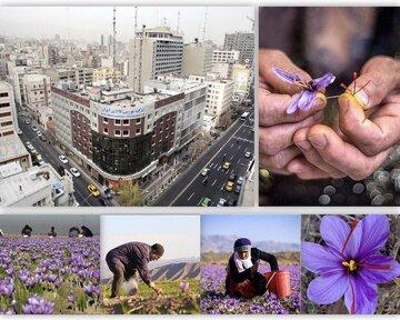 رونق معاملات آتی زعفران نگین برای تحویل شب عید