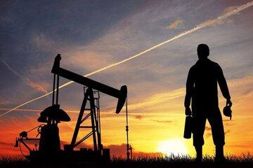 بهای نفت کاهش یافت