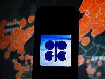 مذاکرات برای نجات بازار نفت شتاب گرفت