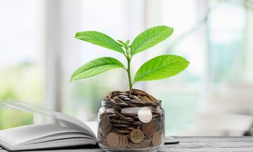 فاز اول درگاه «تامین مالی از طریق بازار سرمایه» راهاندازی شد