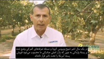 رقابت آمریکا با پسته ارزان ایرانی