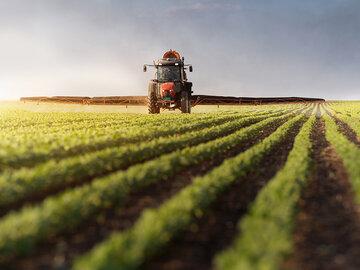 قیمت محصولات کشاورزی در بالاترین سطح یک دهه اخیر