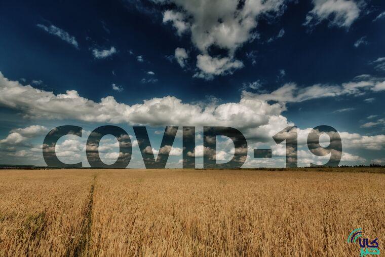کرونا+کشاورزی