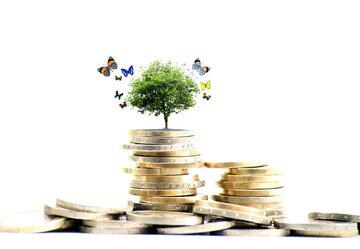 سرمایه گذاری صندوق های کشاورزی در گواهی سپرده و اوراق مشتقه