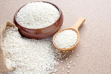 مراحل نهایی پذیرش انبار برای معاملات گواهی سپرده برنج در حال انجام است