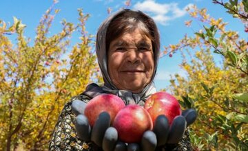 حمایت از کشاورزان آذربایجان غربی با عرضه محصولاتشان در بورس کالا