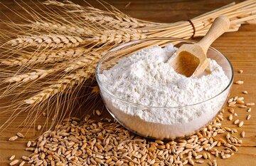 دوره طلایی شرکت های تولیدکننده آرد در زمان عرضه گندم در بورس کالا