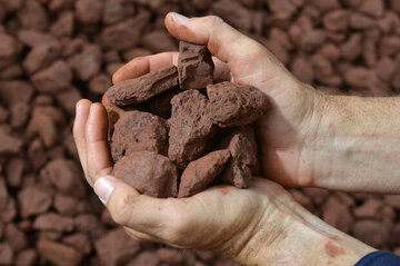 دادوستد ۵۰ هزار تن سنگ آهن دانه بندی در تالار حراج باز
