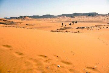 سودان تاسیس بورس طلا، موادمعدنی و کالاهای کشاورزی را تصویب کرد