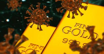 کرونا در تعقیب طلا