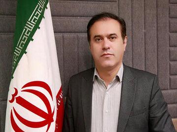 نگاه مثبت مجلسیها به طرح ساماندهی خودرو